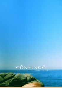 Confingo 4 cover sample